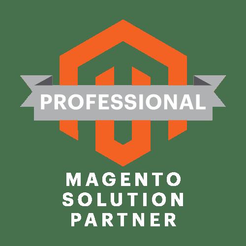 Magento Professional Solution Partner